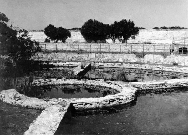 San Felice Circeo - Vasca romana per l´allevamento del pesce presso Torre Paola